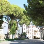 Grado - Campo Elia Patriarca